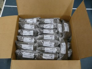 Box of soil samples packed in clear bags