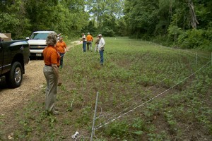Installing a Gallagher fence at The Proving Grounds
