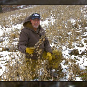 A Late Winter Food Plot of Eagle Seed soybeans with Dr. Grant Woods