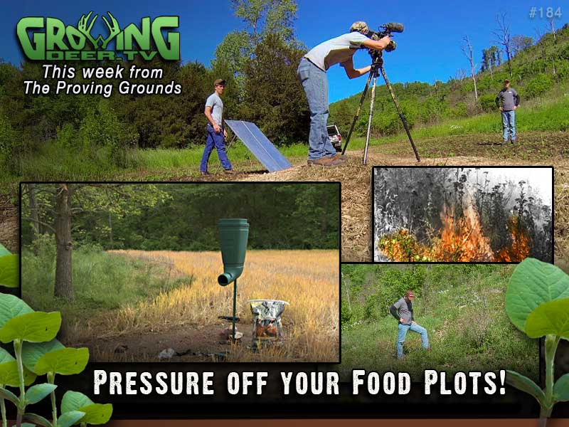 Food plot techniques this week in GrowingDeer.tv episode 184.