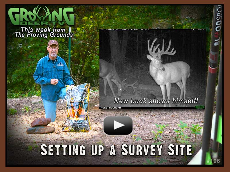 Grant shows how to set up a trail camera survey site in GrowingDeer.tv episode 197.