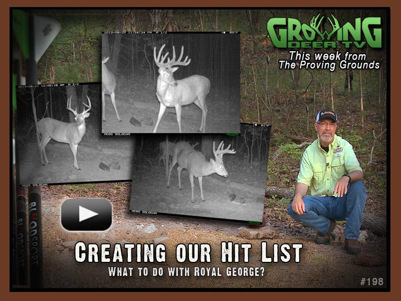 Trail Camera Photos of bucks with big antlers