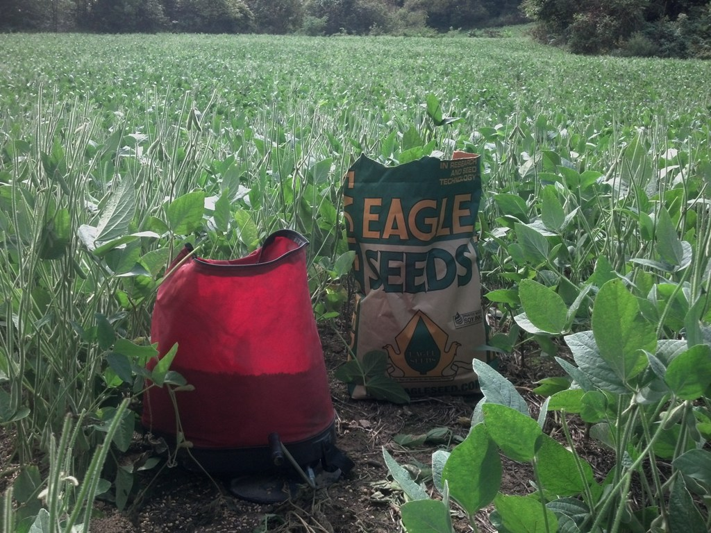 green food plot with a hand spreader and a bag of Eagle Seeds Broadside mix