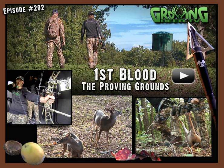 First blood is drawn on www.GrowingDeer.tv in episode #202.