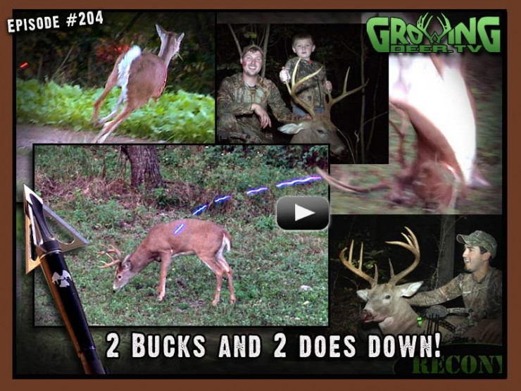 Two bucks and two does go down in GrowingDeer.tv episode #204.