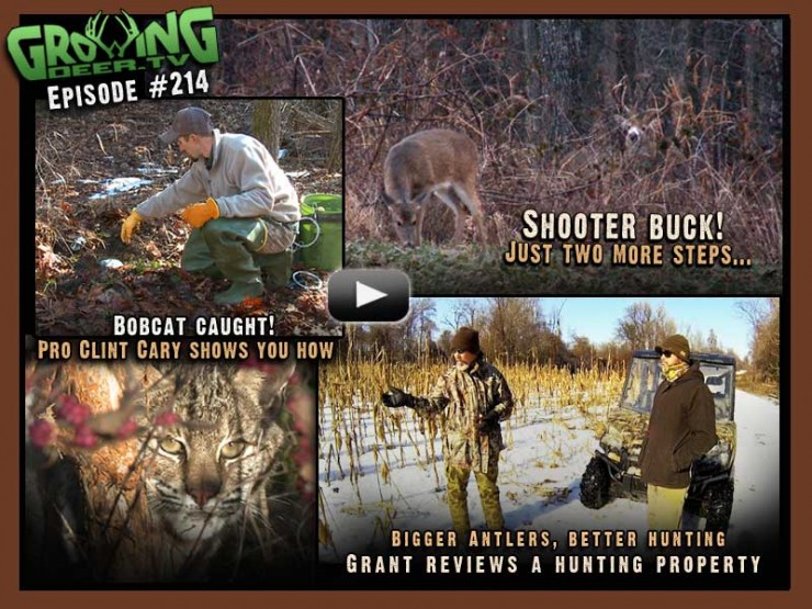 Watch GrowingDeer.tv episode #214 to see Grant's recent hunt when one of the hit list bucks comes in close.