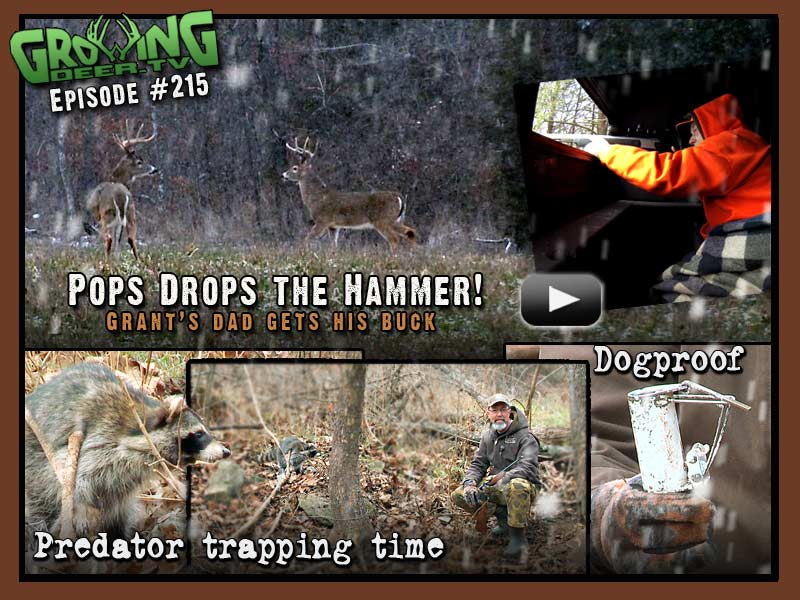 Glen Woods, Grant's father, gets his buck in GrowingDeer.tv episode #215.