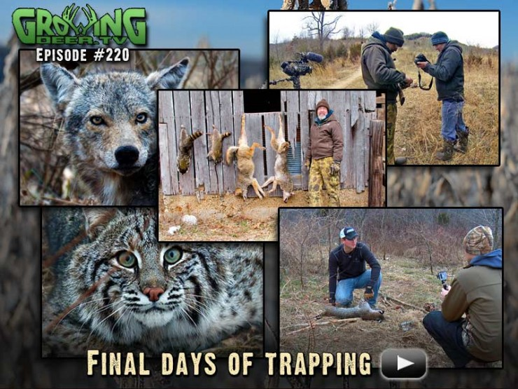 Watch the final days of trapping in episode #220.