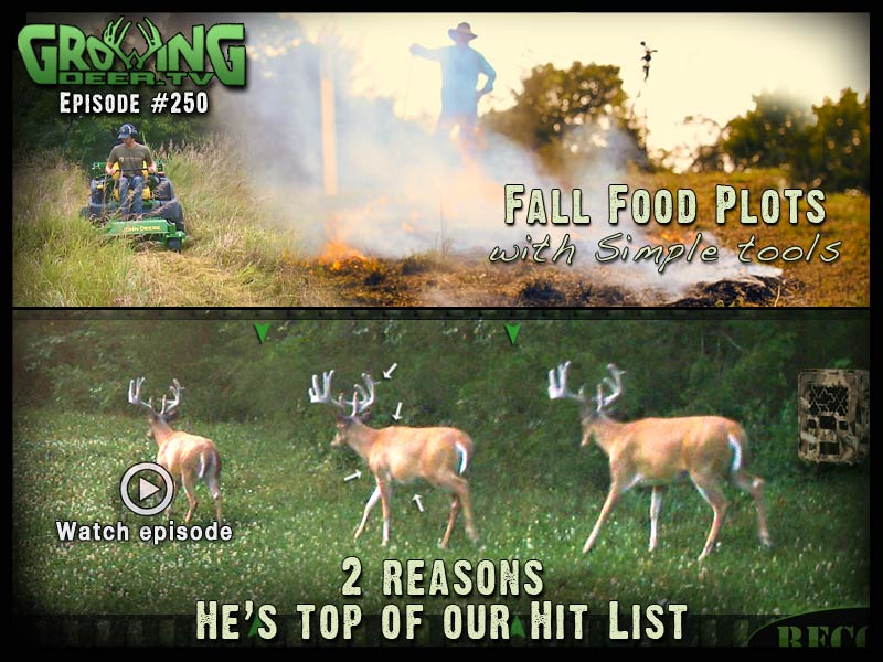 Butterbean is added to the 2014 Hit List in GrowingDeer.tv episode #250.