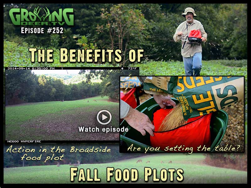 The benefits of bow season planting in GrowingDeer.tv episode #252.