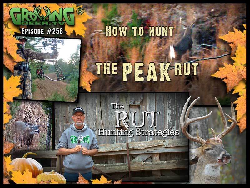 Grant shares rut hunting strategies in GrowingDeer.tv episode #258.