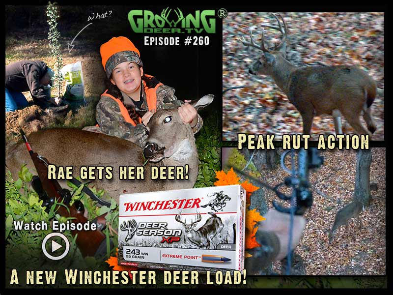 Young Rae gets a deer with the new Winchester Deer Season XP.