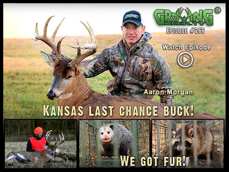 Aaron Morgan tags a Kansas 10 point buck in GrowingDeer.tv episode #266.