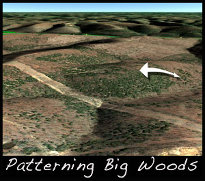Look for ridges when trying to pattern deer in big woods.