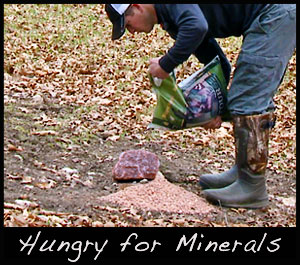 We supply minerals to our deer herd.