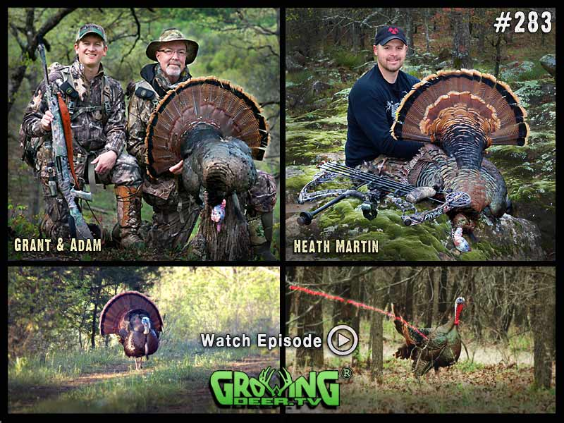 Two gobblers down in GrowingDeer.tv episode #283.