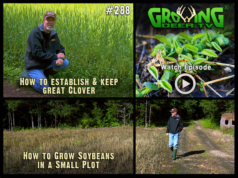 Learn how to manage your food plots in GrowingDeer.tv episode #288.