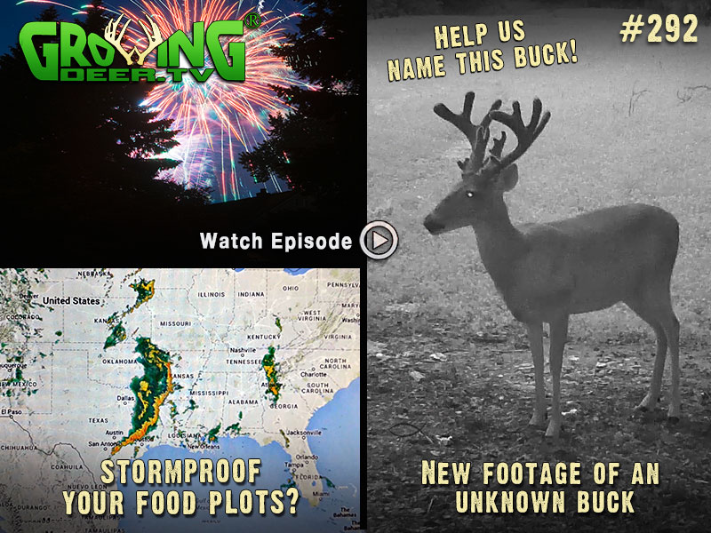 Learn how to stromproof your food plots in GrowingDeer.tv episode #292.