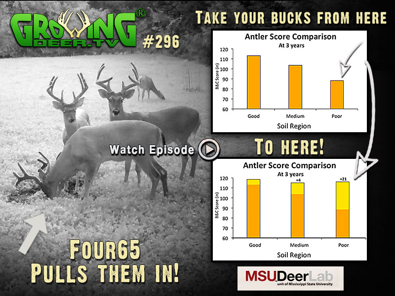 Learn all about antler size in GrowingDeer.tv episode #296.
