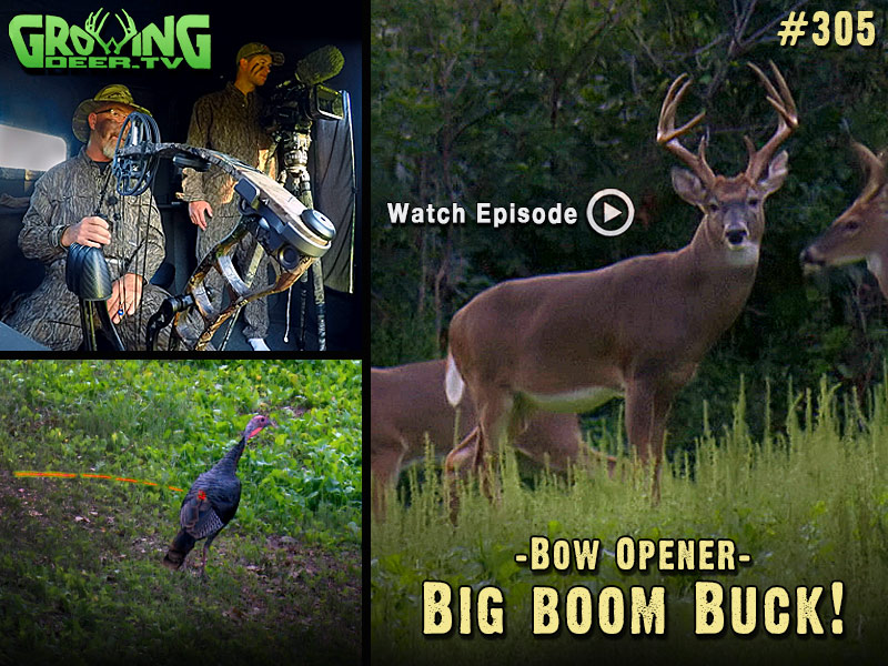 Watch the 2015 bow opener is GrowingDeer.tv episode #305.