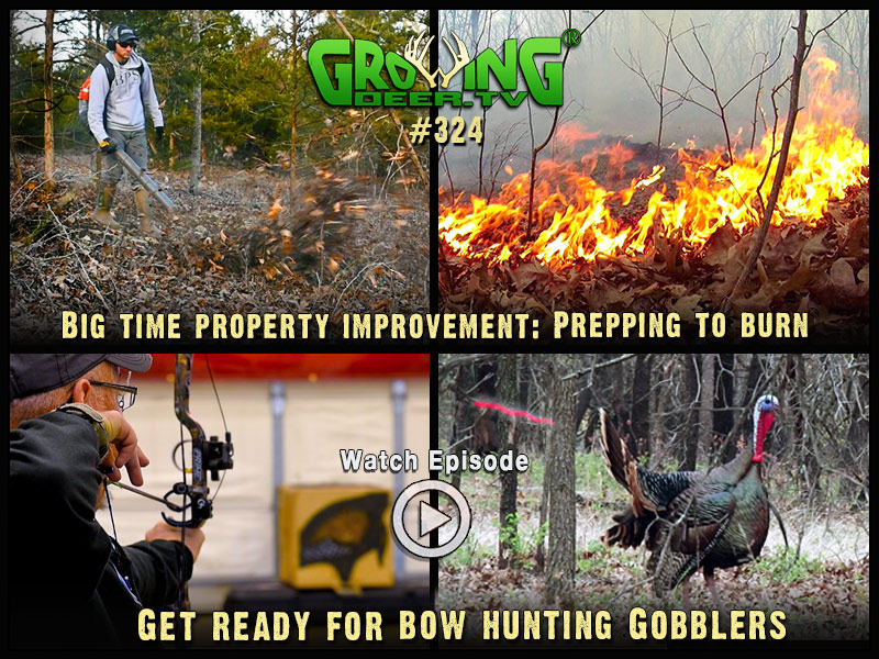 Watch GrowingDeer episode #324 to learn how we use prescribed fire.