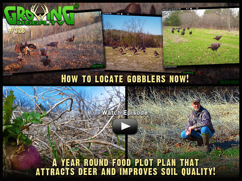 Learn how to locate gobblers in GrowingDeer episode 328.