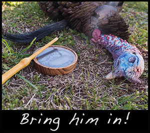A gobbler and a Hook's turkey call.