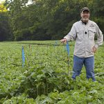 Dr. Grant Woods Stands beside a utilizaiton cage in a field of eagle seed soybeans