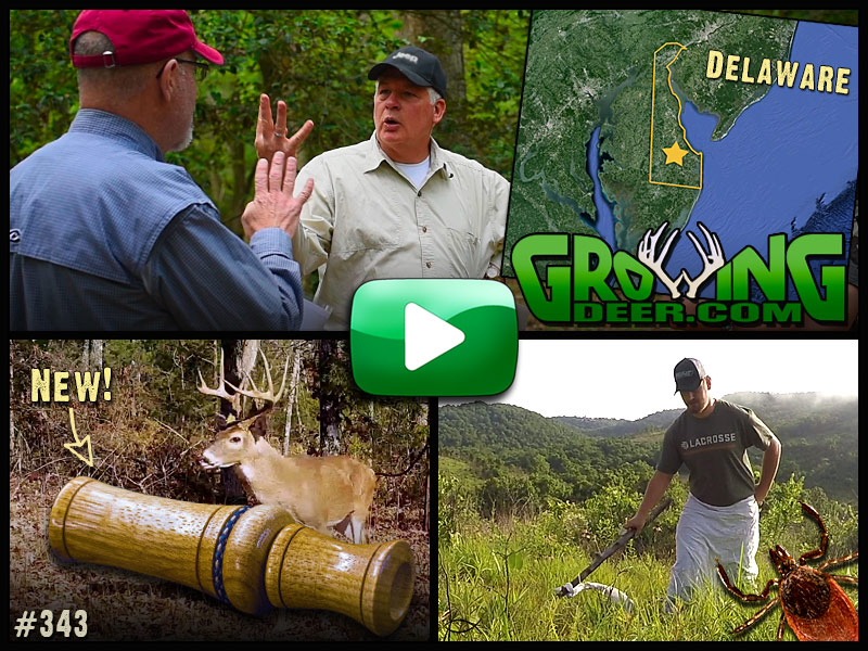 Watch GrowingDeer episode 343 Tips To Attract And Hold Deer On Your Property