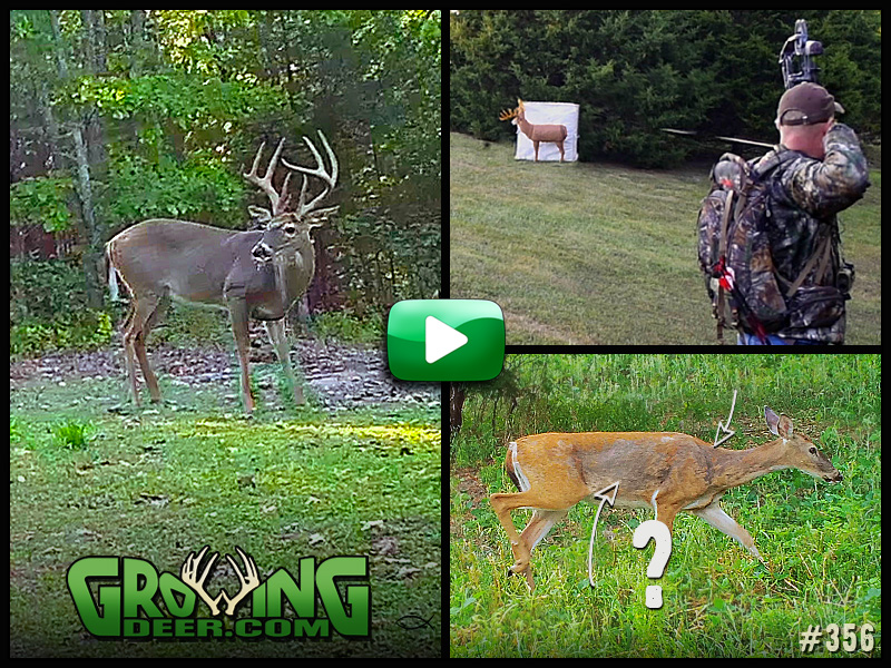 Watch the warm up to deer season in GrowingDeer episode 356.