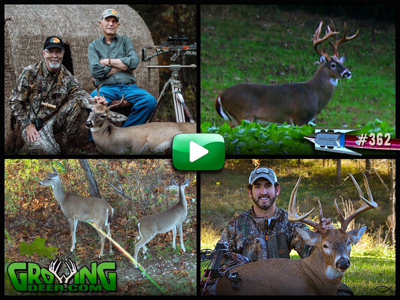 More whitetail hunting action in GrowingDeer episode #362.