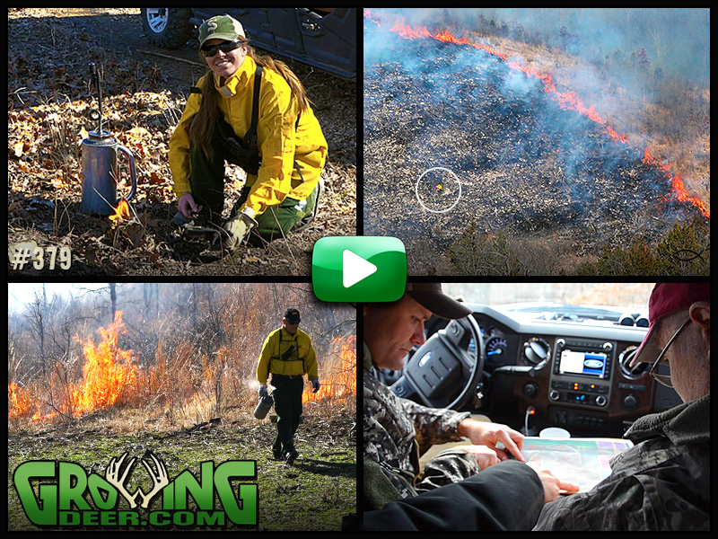 Prescribed fire and Trophy Rocks hit the ground in GrowingDeer episode 379.