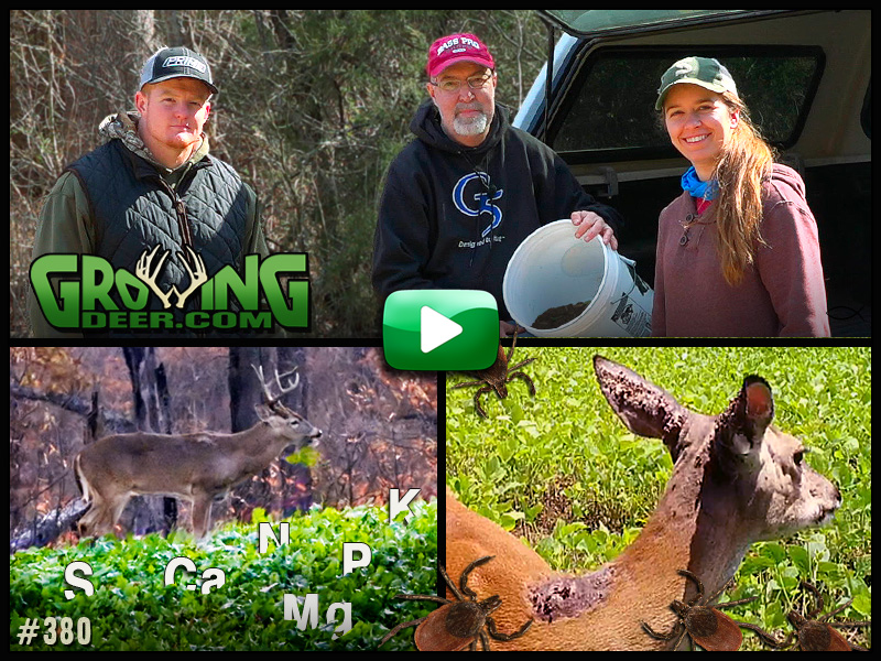 We take steps to help the deer herd reach its potential in GrowingDeer episode 380.