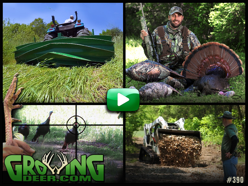 A turkey hunt and food plot tips in GrowingDeer episode 390.