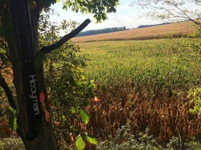 Scouting public land for deer hunting locations