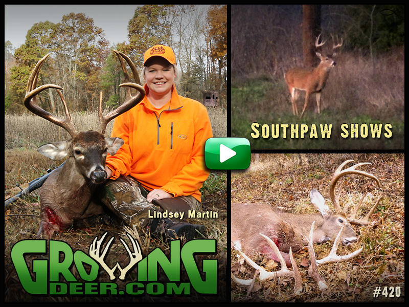 Watch the Martins tag a massive buck in episode 420 on GrowingDeer.com.