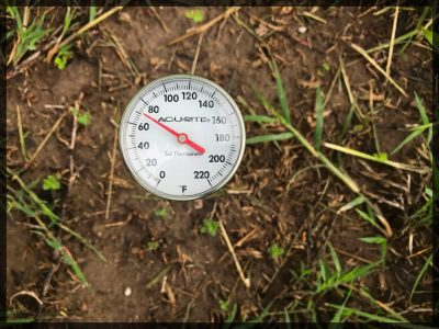 a soil thermometer shows soil temperature