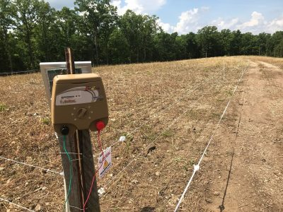 hotzone fence over new food plot