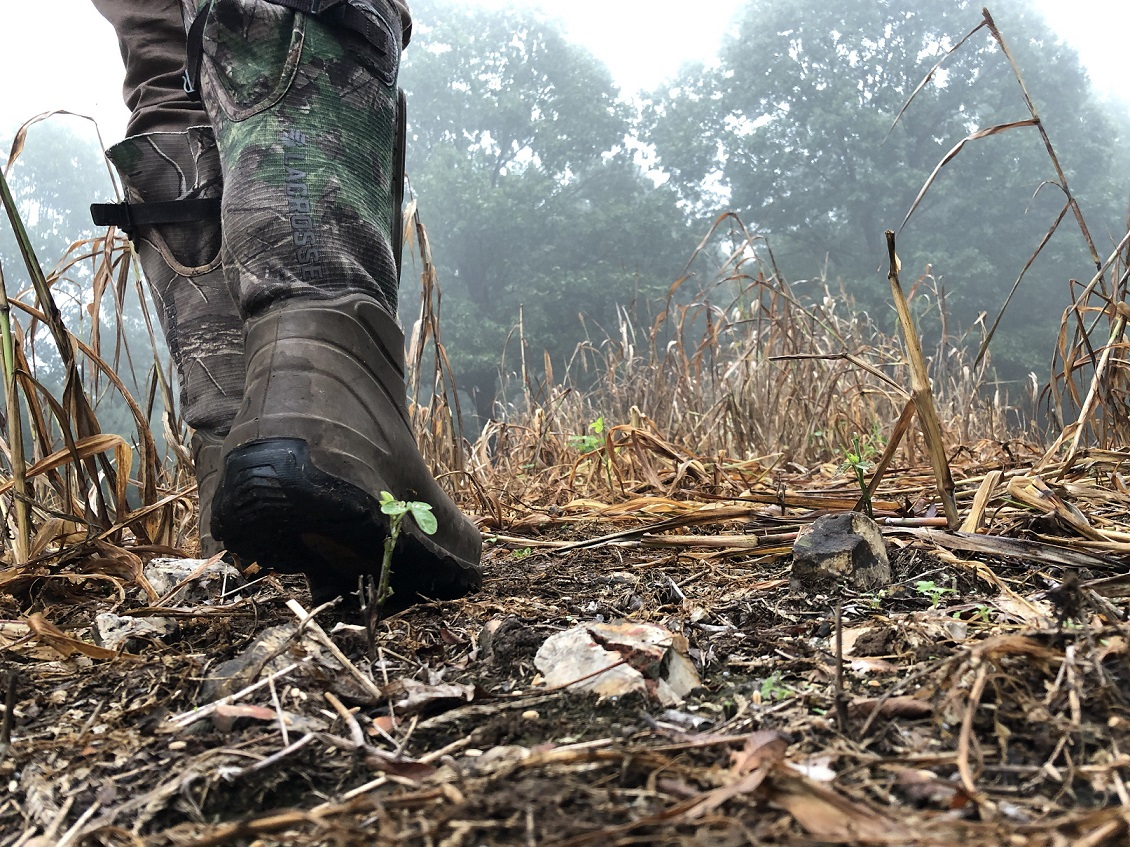 ground level view of worker in boots walking in food plot spreading seed