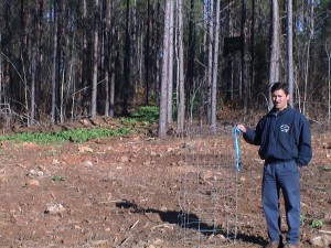 Dry food plot in a utility cage