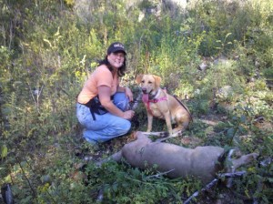 Tracy Woods with Labrador Retriever Used to Blood Trail the Whitetail Doe