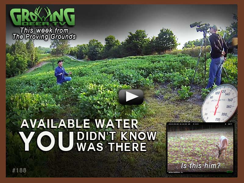 Food Plots, Surviving the Heat in episode #188 at GrowingDeer.tv.