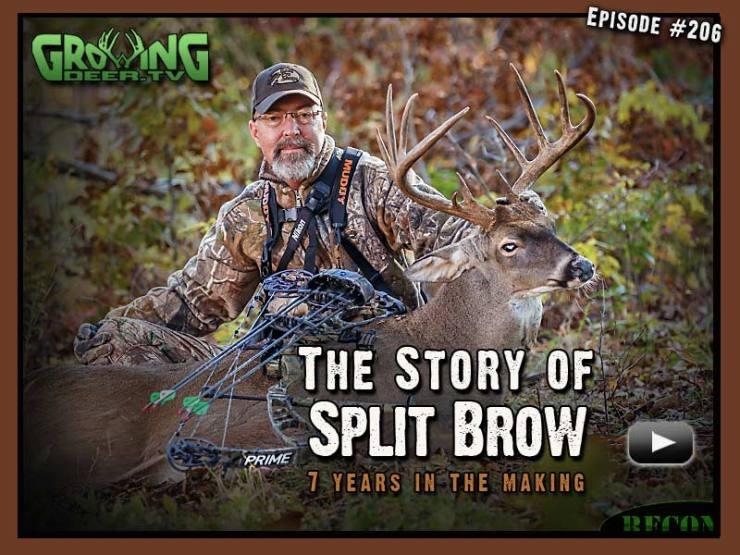 Grant kills Split Brow, a hit list buck