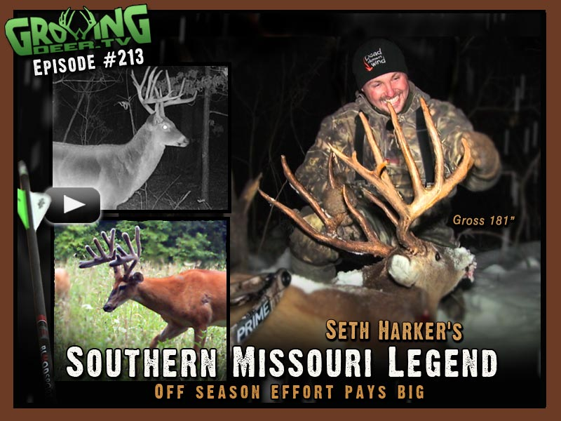 Seth Harker arrows the largest buck ever on GrowingDeer.tv in episode #213.