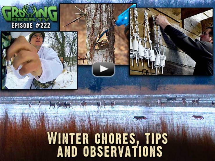 Learn how to control invasive species in GrowingDeer.tv episode #222.