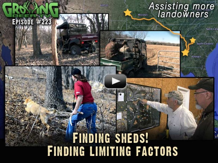 We search for shed antlers in GrowingDeer.tv episode #223.