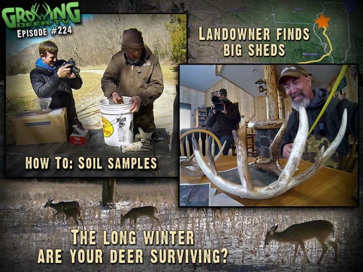 We find more shed antlers in GrowingDeer.tv episode #224.