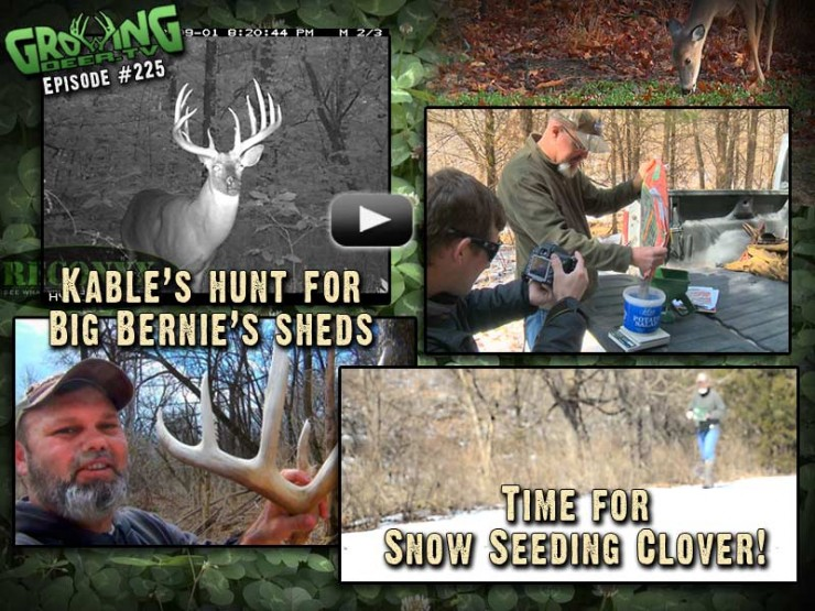 We show how to snow seed clover in GrowingDeer.tv episode #225.