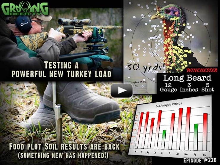 In episode #226 on GrowingDeer.tv advice to improve deer hunting and habitat as well as testing a new turkey load from Winchester.
