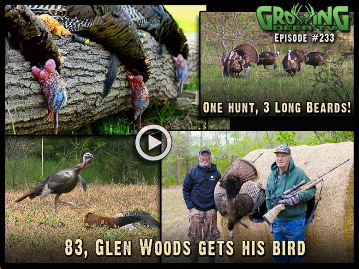 Four more Long Beard XR loads hit their mark in GrowingDeer.tv episode #233!